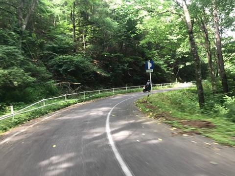 県道482号はアドベンチャー向きの楽しい道
