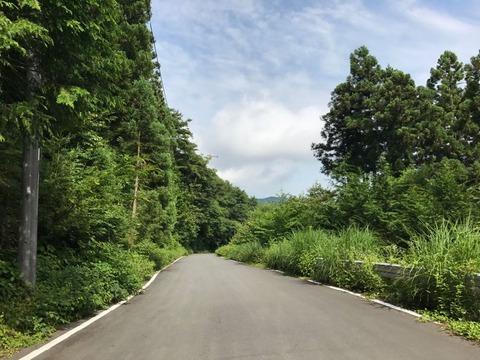 塩沢峠も走りやすい道