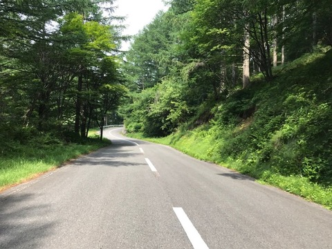 アザレアラインことよもぎこば林道は最高のタイトロード
