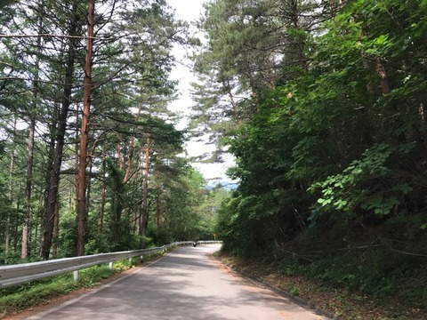 ブドウ峠の西側はちょっとだけ走りやすい