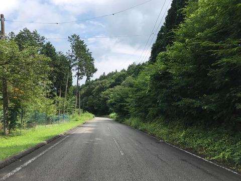 キャンプ場周辺の道は目印がないので迷わないよう注意が必要