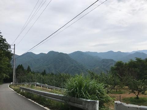 県道212号の笹子峠を甲斐大和へ下る