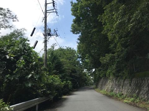定峰峠は路面も綺麗で走りやすい
