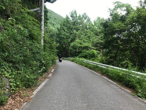 県道93号は田口峠へ向かって登る。険しい道!