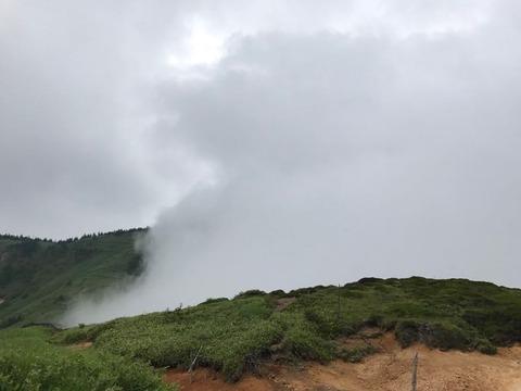 霧の中と外は紙一重
