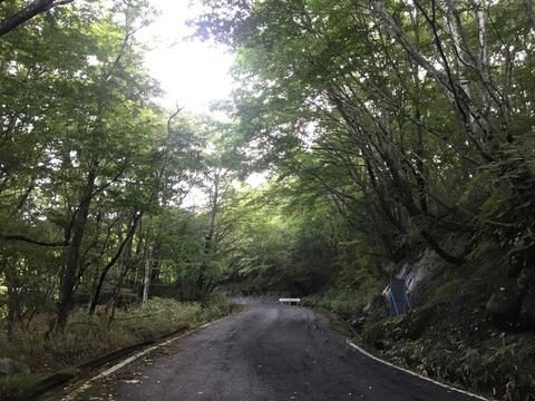 粕尾峠は楽しい線形なのに路面が悪い