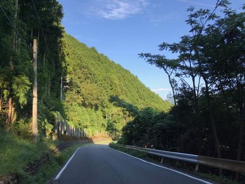 国道473号は大井川沿いに蛇行しながらゆるやかに登って行く道