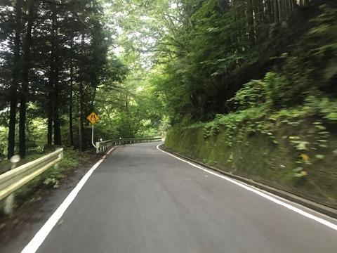 県道219号は超快走路