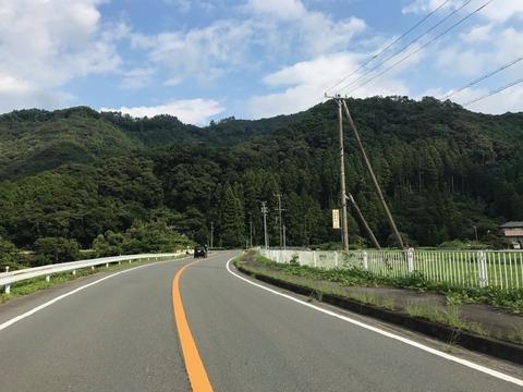 国道はリッチで走りやすいものの、浜松の山手に直線はほとんどなし