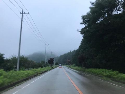 夜中に降った雨がまだ路面を覆っています