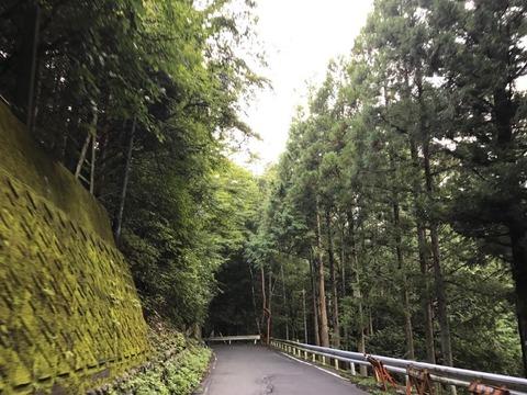 県道はそのまま60号と合流し、井川湖へのラストスパート
