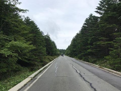 麦草峠の交通量多すぎ問題