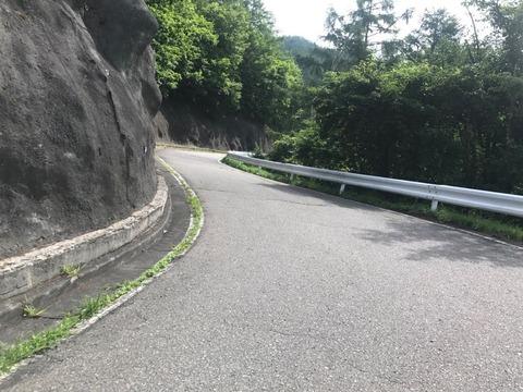 県道124号でぶどう峠を登る