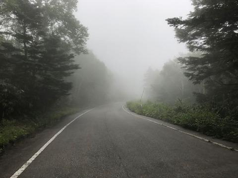 標高を上げるごとに濃くなる霧