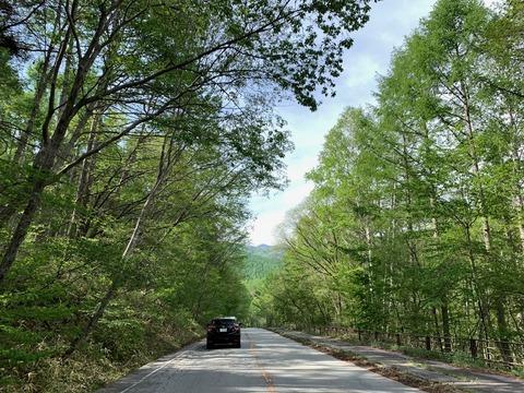 碓氷峠→浅間サンライン→ビーナスライン→八ヶ岳高原ライン