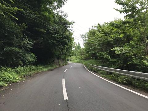 県道63号は県民の森キャンプ場までのおだやかな道