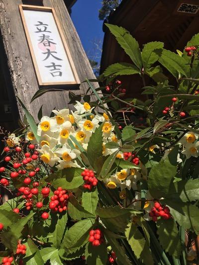 flowers-3361802_1920