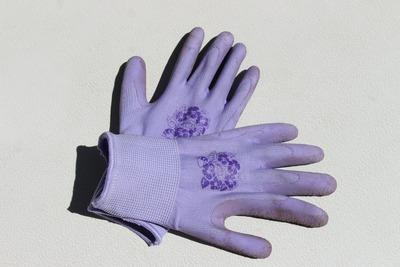 gardening-gloves-363494_1920