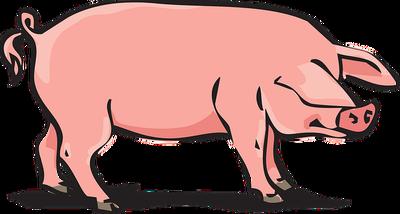 pork-2146010_640 (1)