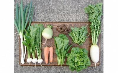 107 風の谷(野菜)