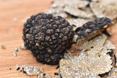 truffle-4401317_1920