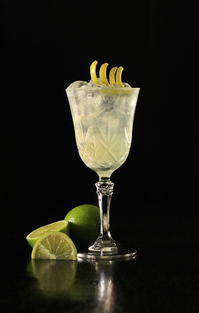 gin-and-tonic-4499713_1920
