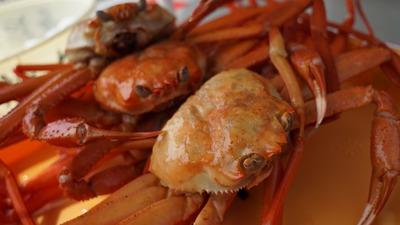 crab-1033446_1920