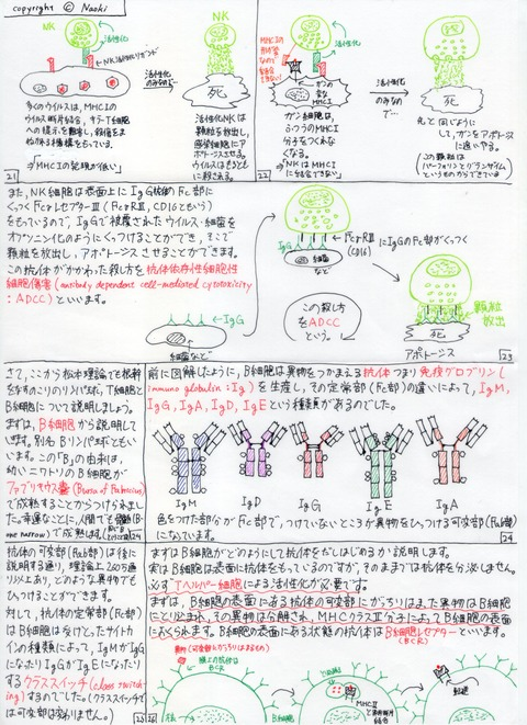 Matsumoto's Theory 3