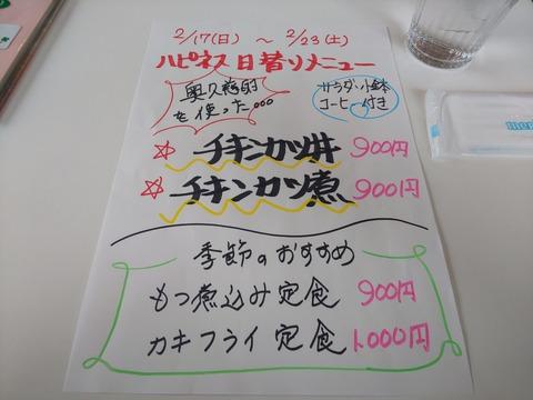 DSC_0017 (3)