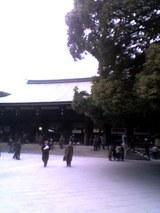 明治神宮2009.2