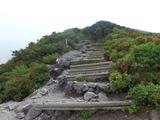 ブログ/大山登山 034