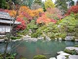 百済寺・庭園