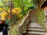 京都紅葉2010 015