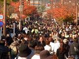 京都紅葉2010 048
