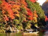 京都紅葉2010 014