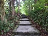 ブログ/大山登山 010