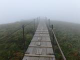 ブログ/大山登山 041
