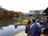 京都紅葉2010 007
