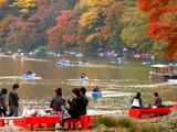 京都紅葉2010 042