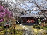 Fotor_155447344841557-1024x768