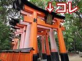 1593913314886_copy_1024x768
