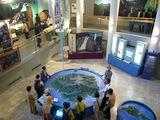 文化村センター