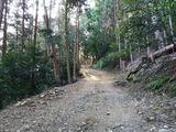 Fotor_157451836318426-1024x768