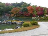京都紅葉2010 022