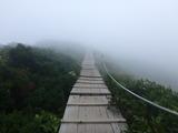 ブログ/大山登山 039