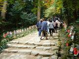 金剛輪寺・階段