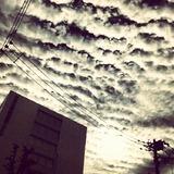 IMG_20121007_144032
