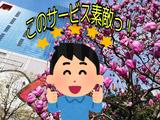 17_copy_1024x768