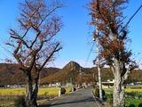Fotor_157475811898324-1024x768