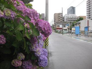 day_dai20160613-2